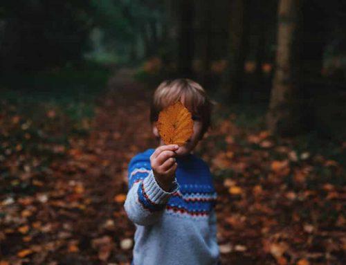 Spielerisch den Wald erleben – auf zur Schatzsuche